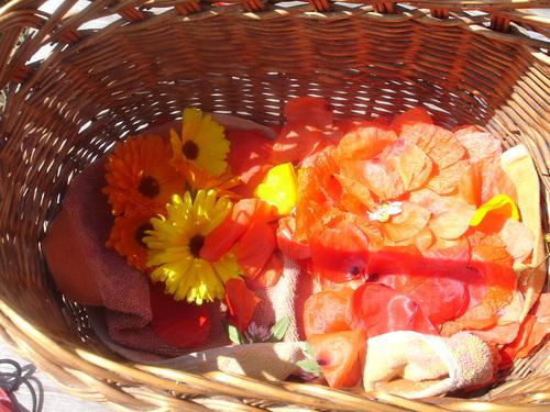 12 juin '14 - Mon panier du jour (10 juin) : coquelicots et framboises