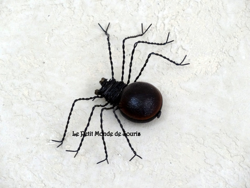 araignée en oeil de boeuf