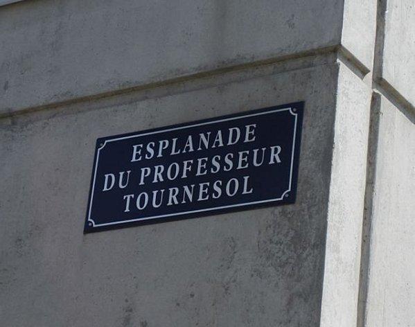 Bordeaux 2563