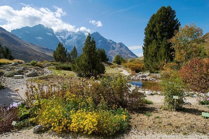 Jardin botanique-alpin du Lautaret