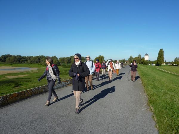 Randonnée au Lac du Der (quatrième jour) : Randonnée et visite du Musée du Pays du Der
