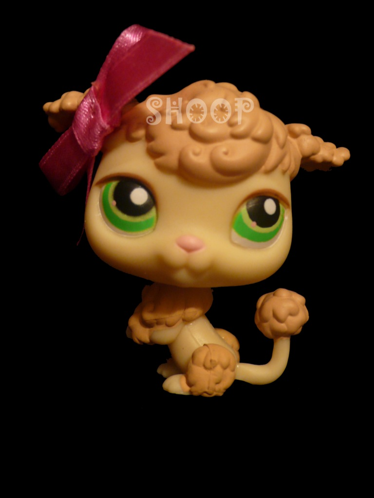 LPS 146