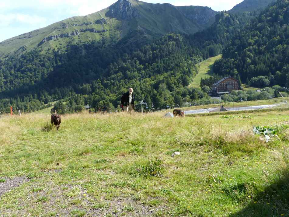 Excursion au Puy de Sancy