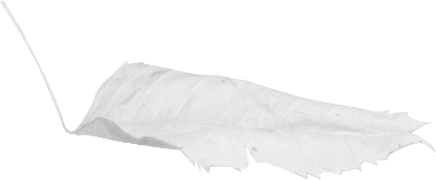 Kit Hiver (1)