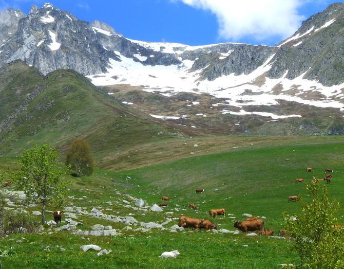 -La traversée des Alpes  II.