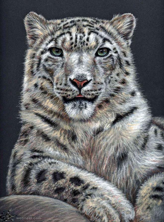 animal drawing tiger