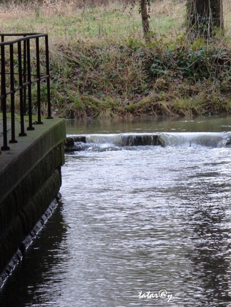 L'eau revient dans la rivière.
