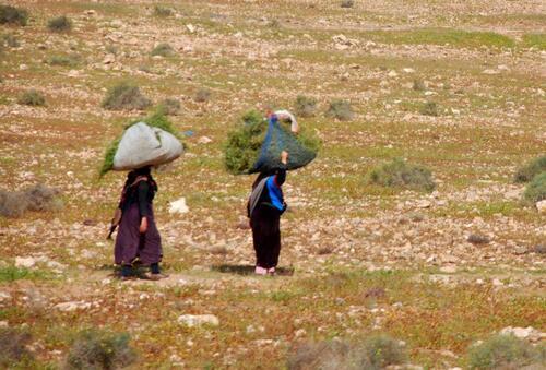 Des femmes qui rentrent des champs