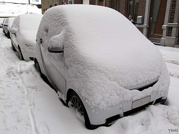 Boule de neige