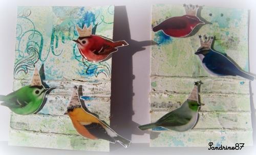 des oiseaux sur une ATC