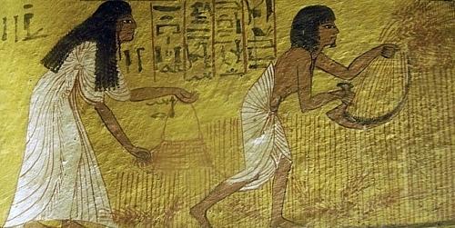 ail egypte