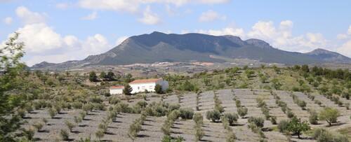 9 mai - Beas de Granada / Los Baños de  Fortuna
