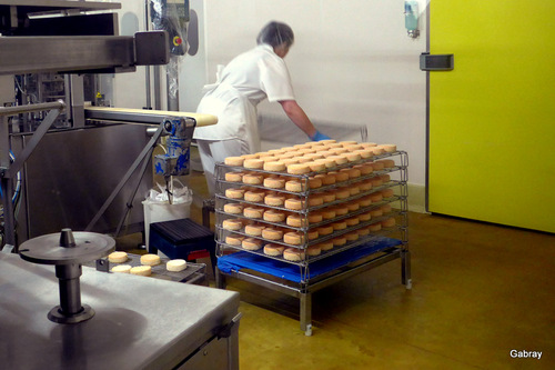 Alsace : une fromagerie du munster