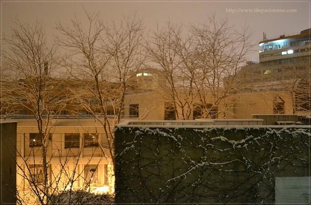 ll neige 18 janvier 2013 1