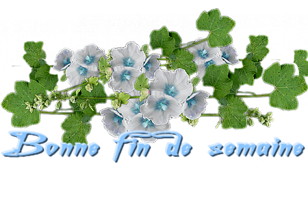 Barre avec fleurs bleue ciel