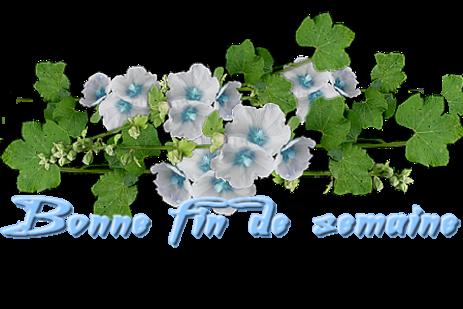 du bleu
