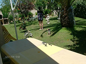2011-VII-13---0643.JPG