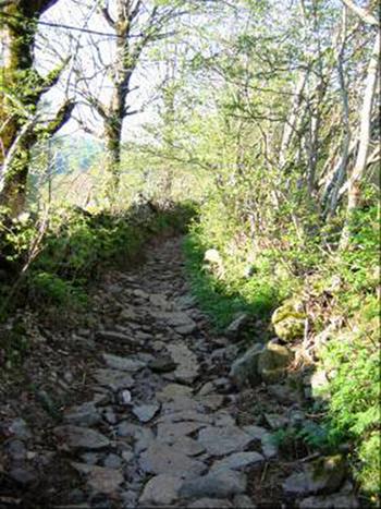 Mon Chemin de Compostelle - 6