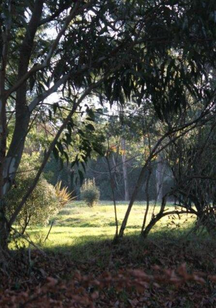 jardin à St Urbain 053