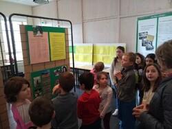 visite de l'exposition sur le seconde guerre mondiale