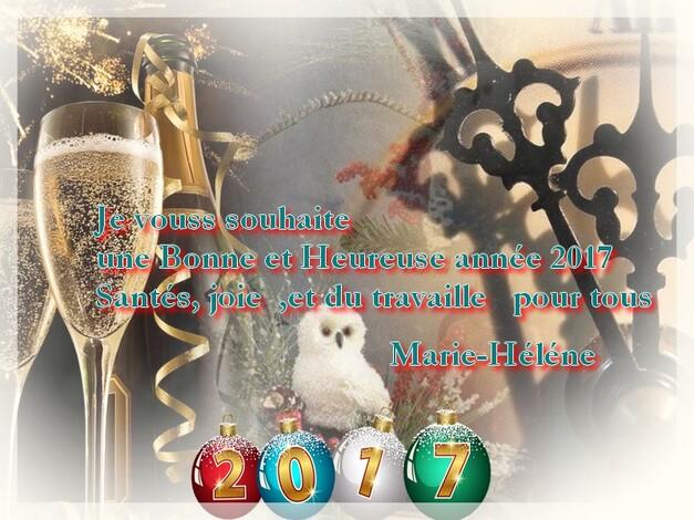 je vous souhaite une bonne  Année 2017