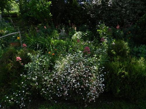 Noce au jardin :