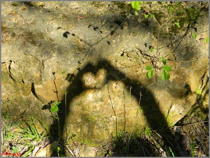 Thème :Coeur
