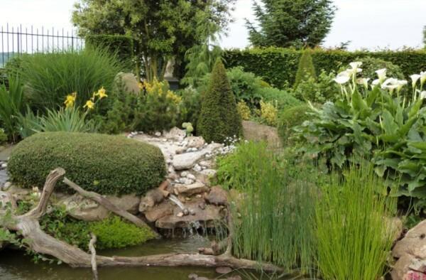 jardins-d-auger---mai-2014---chez-yannick---le-bassin.jpg
