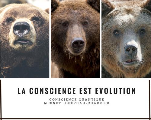 La conscience est évolution ou égalité/unité entre l'ours polaire et la chenille