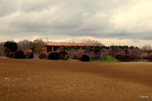 Nailloux: paysages en janvier