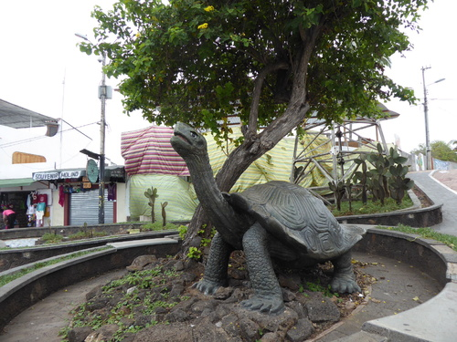 De l'île de Baltra à l'île de Santa Cruz Galapagos