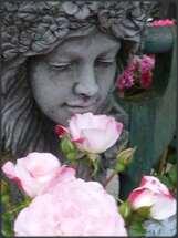 Bienvenue au 'Chant des Roses'