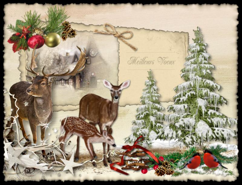 *** Faons de Noël ***