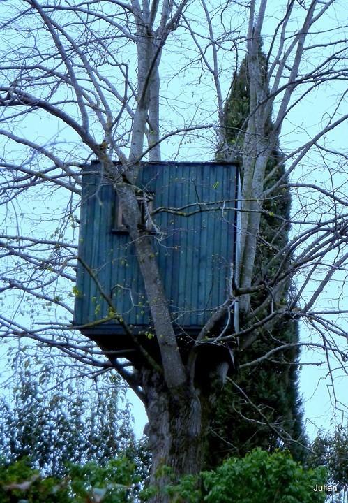 Z04---Cabane-sur-l-arbre.JPG