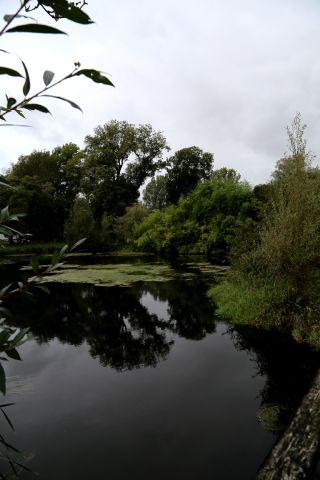 Les Jardins d'Aywiers - Automne 2019