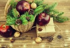 Sapin, gui, houx...: six symboles de Noël à la loupe
