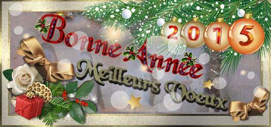 ♥Je vous adresse tous mes Meilleurs Voeux pour 2015