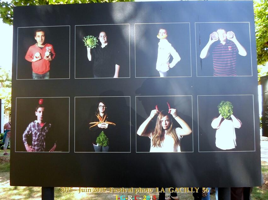 EXPOSITION PHOTO 2015  N° 6  LA  GACILLY  56  1/3   26/06/2015