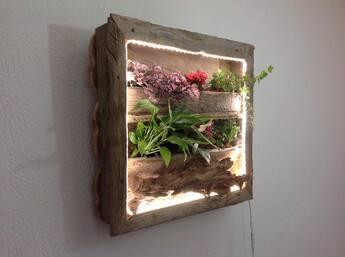 cadre vegetal en bois flotte