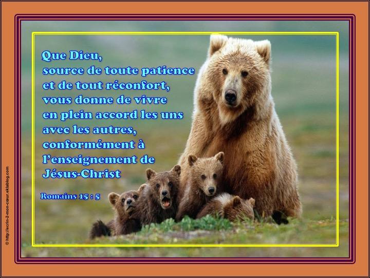 Vivre en plein accord les uns avec les autres - Romains 15 : 5