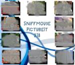 PictureIt 218 - Sniffmouse