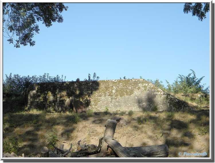 Fort Médoc - Le bastion du Dauphin