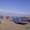 Pat sur le port - Sagres