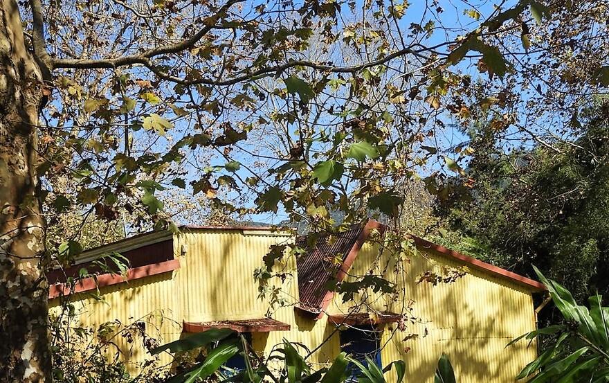 25/10/18 : Fête des Goyaviers (Plaine Palmistes) 2/6