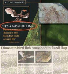 dinosaur-bird-276x300