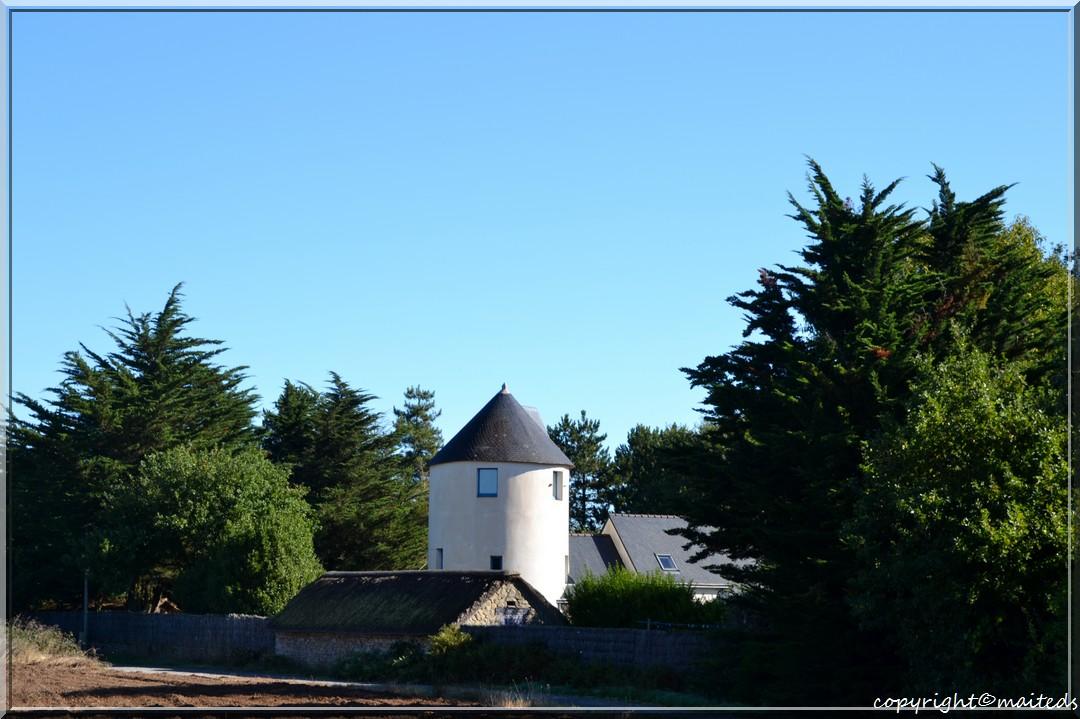 Saint-Lyphard - Loire-Atlantique - 5-10-2013