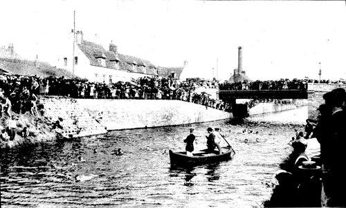 Une course aux canards dans le canal près du pont de Saint-Pierre