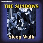 Sleep Walk  (The Shadows)