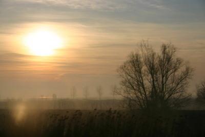 Blog de dyane :Traces de Vie, Comme un cri.......silencieux...un adieu