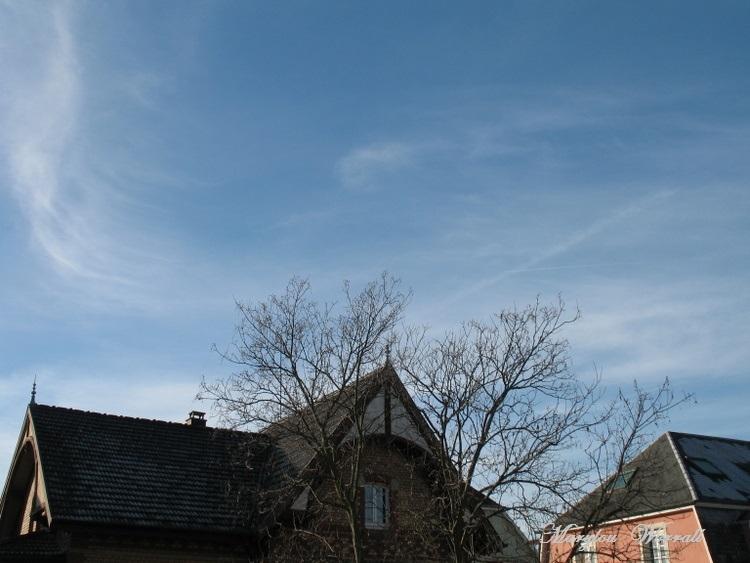 Ciel d'Alsace 248